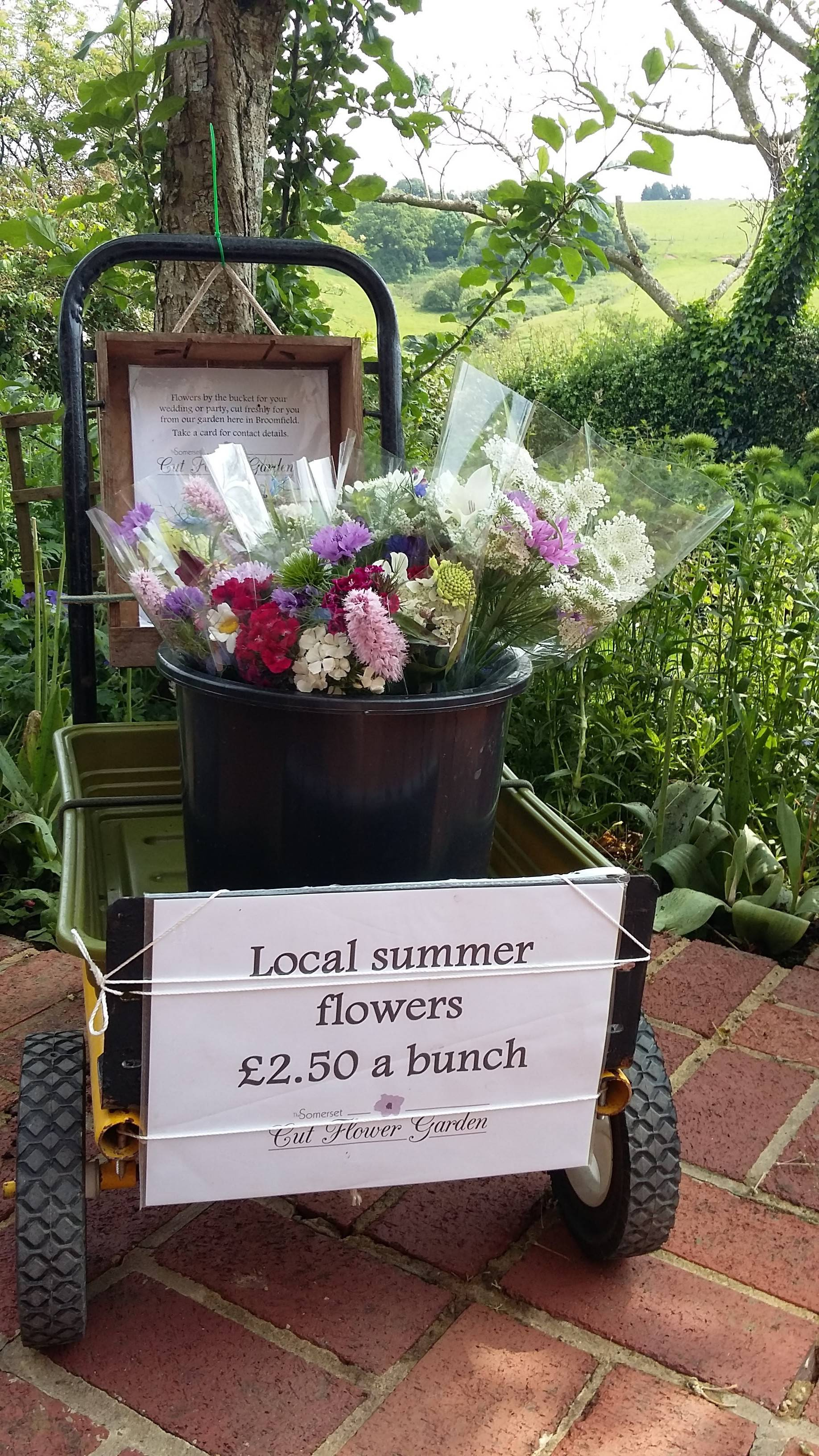 Go for locally grown summer flowers