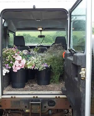 Buckets of flowers on their way to our clients