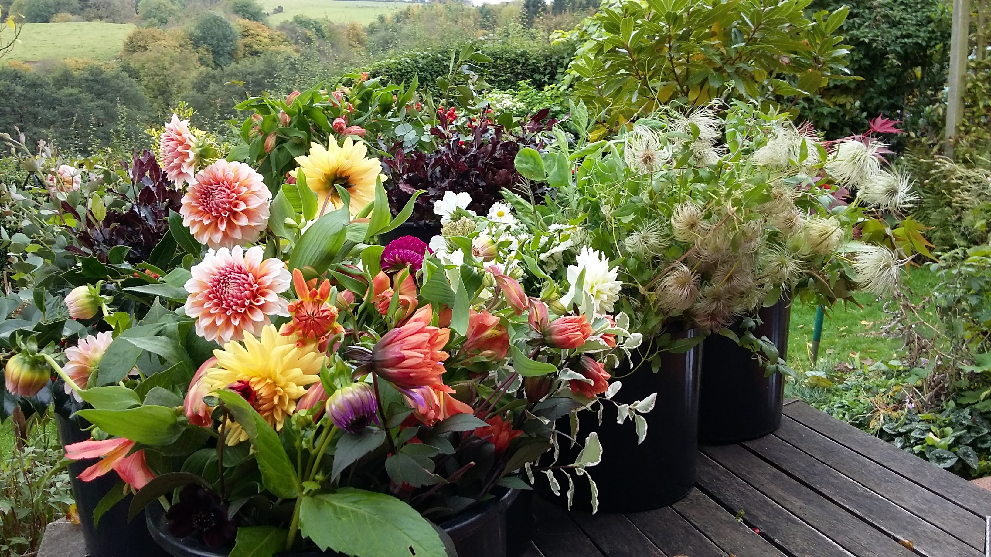 Locally grown flowers for a wedding bouquet from Somerset Cut Flower Garden